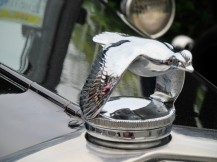 I liked this hood ornament